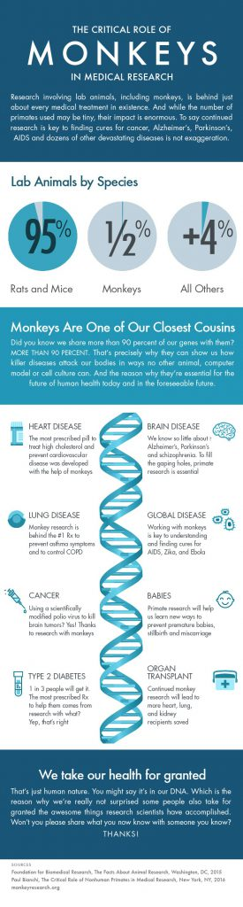 Infographic depicting importance of nonhuman primate models of biological research.