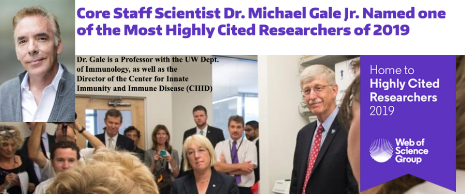 gale highly cited 2019